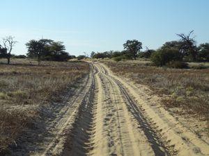 Boso trail 4X4 dans le KTP, plus de 250 kms de (belle) solitude !