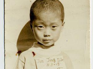 Couleur de peau : miel. La BD et le film autobiographiques de Jung