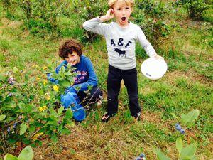 Papillon, la Bretagne &amp&#x3B; les enfants...