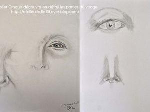Dessiner les détails du visage: les yeux, le nez