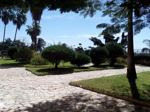 le jardin, oasis de verdure