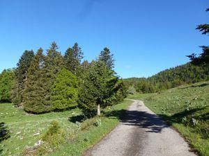 24 mai 2014 - Montées exigeantes des contreforts du Jura