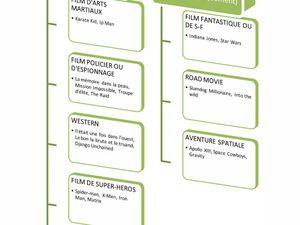 Pour finir, une petite typologie des genres cinématographiques, pour comprendre pourquoi j'ai mis tel film dans tel genre et pas dans un autre. Mais il faut bien avouer qu'un film emprunte le plus souvent dans plusieurs genres à la fois ce qui rend la tâche peu aisée.