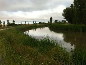 Le long du canal de Castille