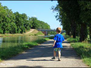 Balade aux bords du canal du Midi