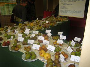Journées de la pomme à Neuvy St Sépulchre