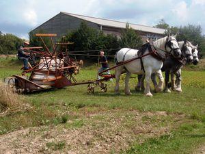 Le festival rural de Chassignolles