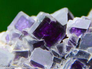 Fluorite from Shangbao Mine, China (size: Museum)