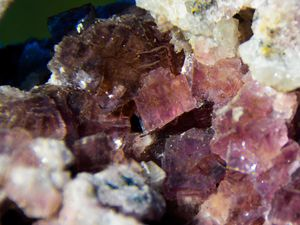 Fluorite from Chaillac, Indre, France (size: Museum)