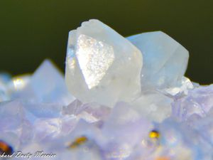 Fluorite (Fluorine) with Calcite and Chalcopyrite from Naica, Chihuahua, Mexico (size: Cabinet)