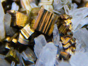 Pyrite with Chalcopyrite on Quartz from Huaron, Peru (Pérou) (size: Cabinet)