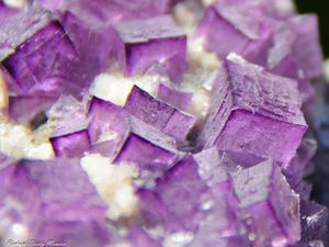 Fluorite from Durango, Mexico