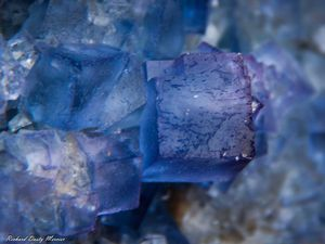 Fluorite (Fluorine) from Bingham, New Mexico (size: Museum)