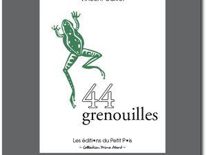 Arnaud Savoye - Stéphan Causse - Nathalie Riéra, Vincent Calvet, auteurs aux Editions du Petit Pois.