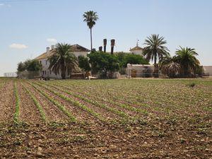 La campagne et ce beau lavoir, installé au début du siècle dernier par la municipalité à une époque ou la région manquée cruellement d'eau. La révolte paysanne commencée à se faire sentir.