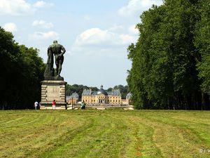 J'ai vu une biche dans les jardins du Château de Vaux le Vicomte