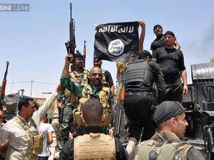 Vingt-six vérités sur le groupe État islamique (EI)