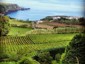 Aperçu de jolis endroits au Portugal, du nord au sud, en passant par les Açores et Madère