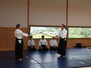 Photos de la démonstration d'Aïkido lors du festival Hanami 2014.