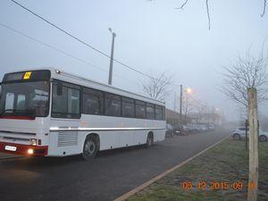 Une journée commencée dans la brume avec en prime un passage de grues. Tout est bien qui finit bien le soleil nous a rejoint en fin de matinée