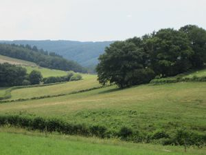 Une promenade-goûter autour de Blanot samedi 26 juillet 2014