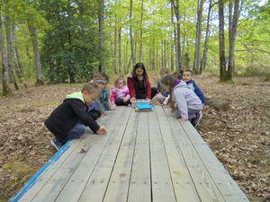 Les CP marionnettistes – champions de l'orientation en forêt!