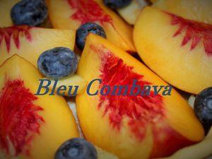 Tarte Rustique aux Fruits de Saison (nectarines, myrtilles)