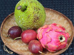 Bavarois de Fruit à Pain à la Vanille Bleue sur sa gelée Passion, Billes fraîches de Pitaya et Feuilles de Caramel#Bataillefood41