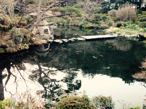 Hakone to Tokyo : des monts aux fripperies.