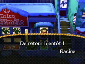 Racine est absent du Brico Mélimélo.