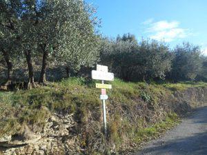 1 et 2- La magnifique petite route de Venterol. 3- Panneau directionnel du col du Pontias.