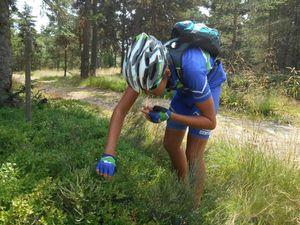 Dégustation de myrtilles, vaches, eaux miraculeuses, et visite de famille...on s'occupe à vélo :-)