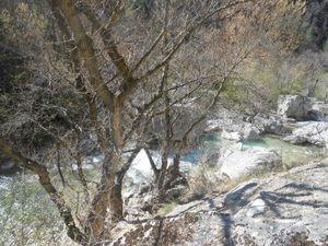 On remonte le col de l'Homme Mort puis St Auban et enfin le passage dans les Gorges du Charruis.
