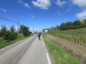 Quelques pancartes jusqu'à Ste Cécile les Vignes où les nordistes nous laissent pour remonter dans le froidddddd !