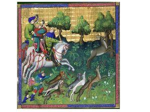Livre de chasse, folio 87                    -                       Livre de chasse, folio 118
