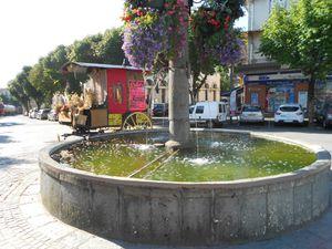 Ce matin-là c'est la grande fontaine et sa cariole et quelques scarabées morts...
