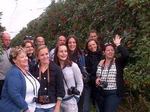 Pomme coupée à l'équateur et équipe de joyeuses blogueuses...