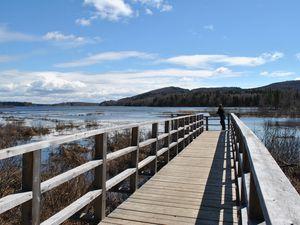Québec welcome back #1 / Les Marais du Nord