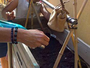 """Début de la végétalisation des jardinières avec les plants du jardin """"semons le cœur du monde"""""""