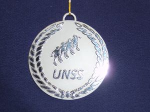 UNSS Volley-ball Juniors/Séniors
