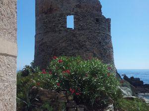 Tour génoise d'Erbalunga, à l'entrée du Cap Corse et non loin de Sisco, commune d'où est originaire Filippu Leccia. // Tour génoise vers Sisco. Août 2013.