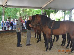 Alexis Gruss et ses chevaux.