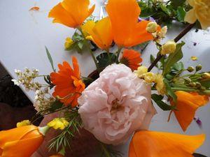 Collaboration fleurie entre des jardiniers passionnés de Bardos et la maison de retraite Albodi