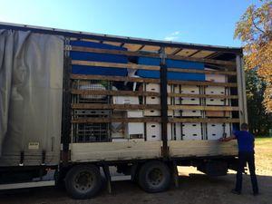 Le 80ème camion d'AIMA pour un établissement pour grands handicapés
