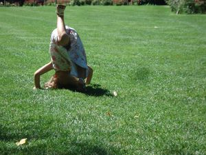 Un peu de gymnastique pour garder la forme... même pour Sylvie