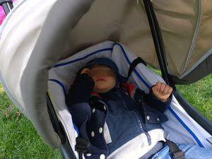 le temps de repos... ne sont-ils pas mignons quand ils dorment ?!