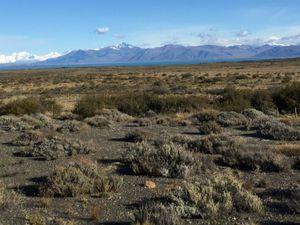Steppe patagonienne