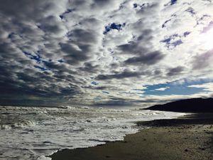 Mer de Tasman