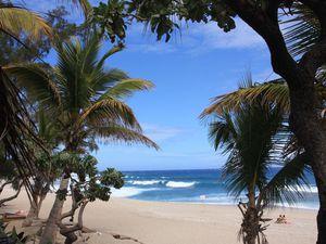 Retour à La Réunion