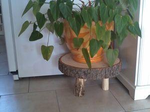 Supports de plantes
